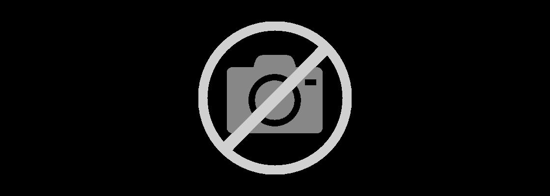Bully Mantel Hundepullover Hundebekleidung Mops Mops Uqwt5ApF