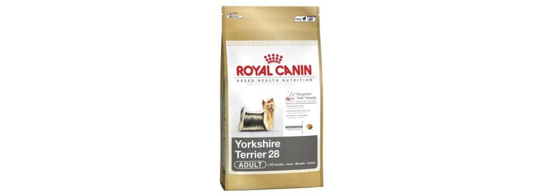 royal canin trockenfutter royal canin hundefutter hundenahrung. Black Bedroom Furniture Sets. Home Design Ideas
