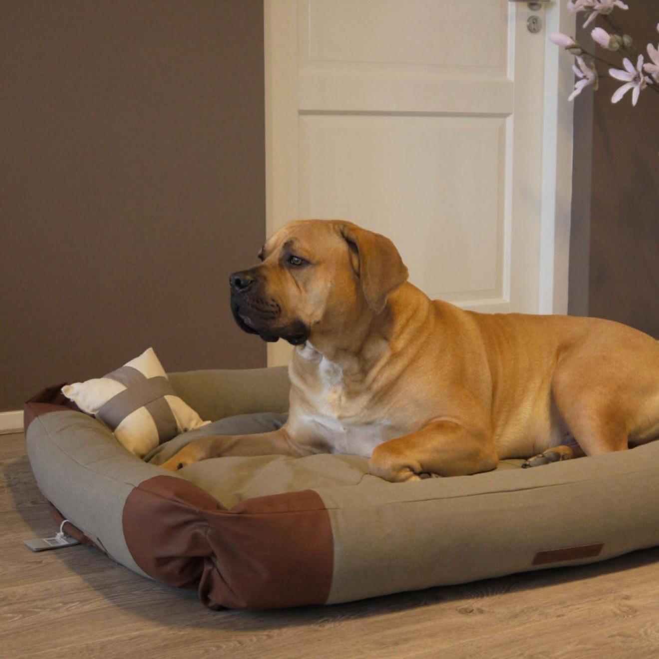 canvas hundebett cornwall in 4 gr ssen hundekorb online kaufen. Black Bedroom Furniture Sets. Home Design Ideas