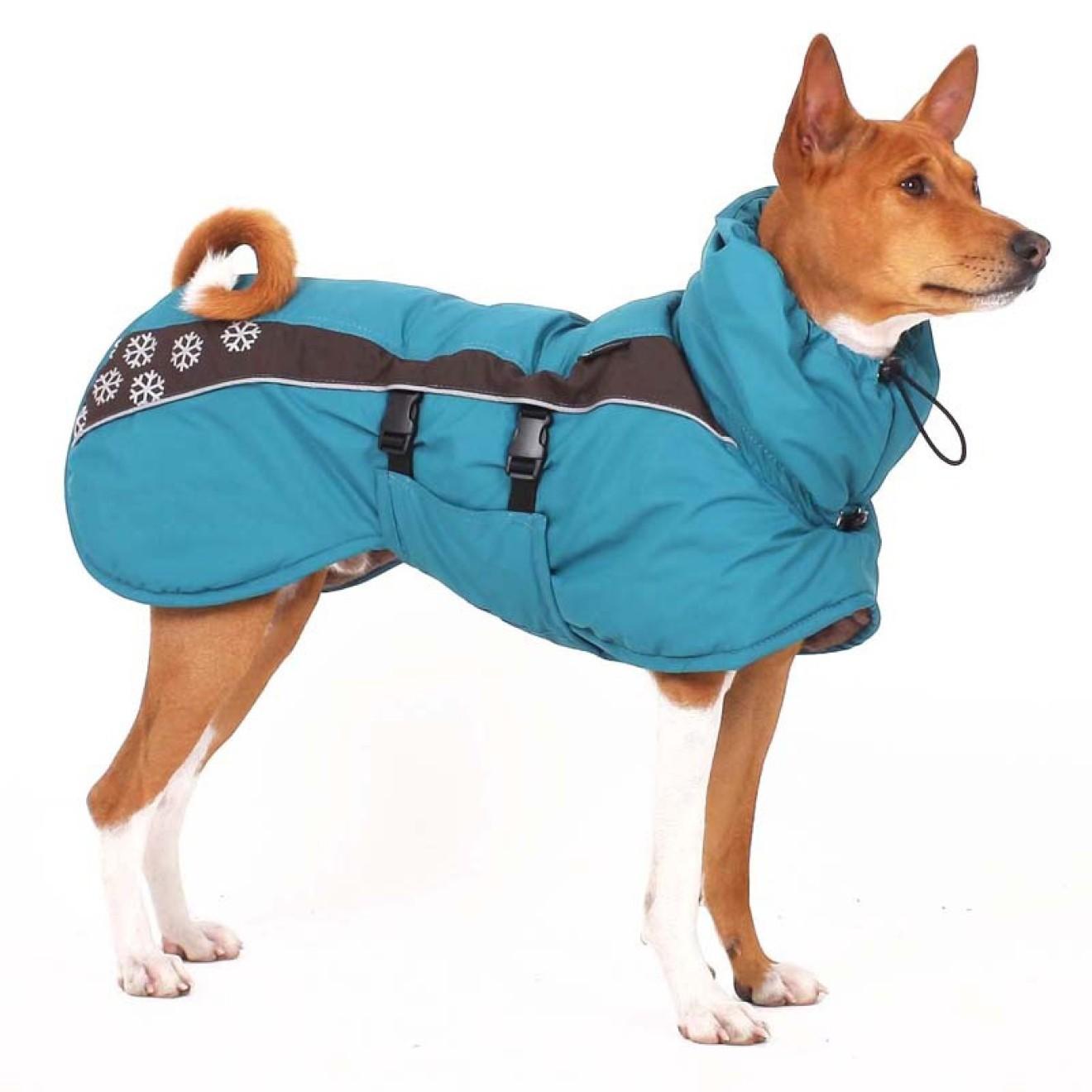 Tolle Freie Strickmuster Für Hunde Mantel Fotos - Schal-Strickende ...