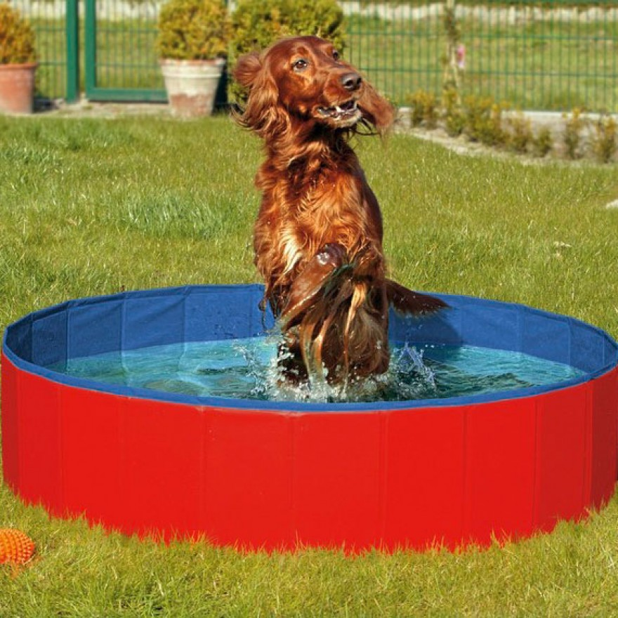 hunde pool in 3 gr ssen rot blau hunde planschbecken doggy pool. Black Bedroom Furniture Sets. Home Design Ideas