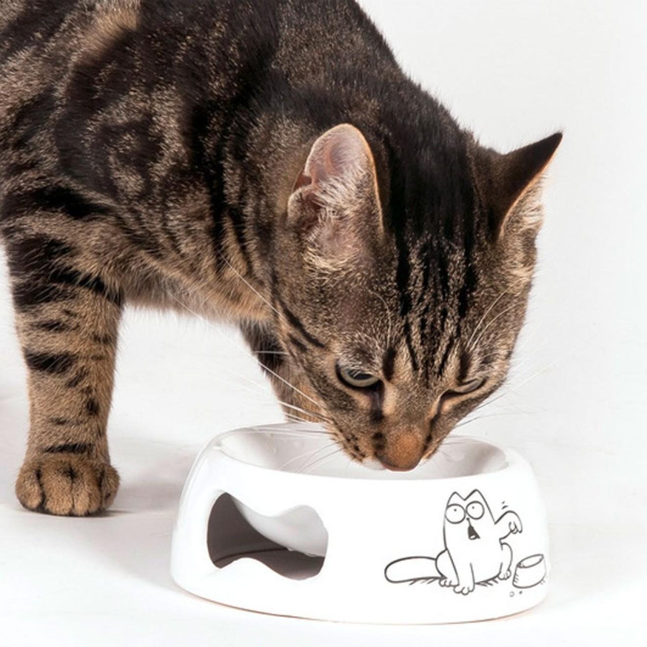 keramik katzennapf simons cat katzen futternapf katzenn pfe. Black Bedroom Furniture Sets. Home Design Ideas