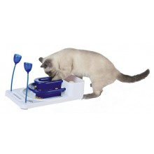 Cat Activity Fantasy Board