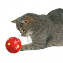 "Cat Activity ""Snackball"""