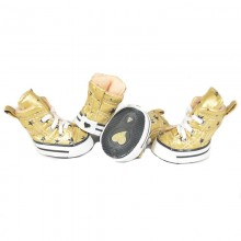 Hunde-Sneakers BE A STAR gold