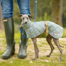 Stepp-Windhundmantel Sage für Italien Greyhound & Whippets